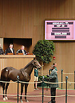 September 08, 2014:Hip #40 Speightstown - Listen to My Song colt consigned by Dromoland sold for $500,000 to Shadwell Farm at the Keeneland September Yearling Sale.  Candice Chavez/ESW/CSM