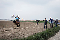 horse power. <br /> <br /> 117th Paris-Roubaix (1.UWT)<br /> 1 Day Race: Compiègne-Roubaix (257km)<br /> <br /> ©kramon