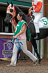 September 3, 2012.  Ben's Cat, ridden by Julien Pimentel and trained by King Leatherbury, wins the grade III Turf Monster Handicap, a Breeders' Cup Challenge race, at Parx Racing for the second consecutive year. (Joan Fairman Kanes/Eclipse Sportswire)