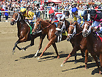 Cavorting (no. 5), ridden by Javier Castellano and trained by Kiaran McLaughlin, wins the 69th running of the grade 1 Personal Ensign Stakes for fillies and mares three years old and upward on August 27, 2016 at Saratoga Race Course in Saratoga Springs, New York. (Bob Mayberger/Eclipse Sportswire)