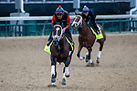 APRIL 30, 2015: Materiality, trained by Todd Pletcher, exercises in preparation for the 141st Kentucky Derby at Churchill Downs in Louisville, Kentucky. Jon Durr/ESW/Cal Sport Media