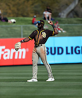 Taylor Trammell - San Diego Padres 2020 spring training (Bill Mitchell)