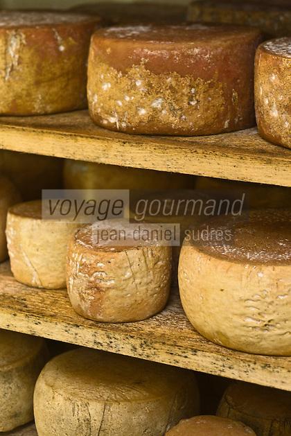 Europe/France/Rhône-Alpes/26/Drôme/Pont-de-Barret: Les Tomes de Brebis de Laure Charoin dans la cave d'affinage- Son mari Nicolas élève des agneaux bio