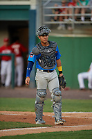 Myrtle Beach Pelicans catcher Miguel Amaya (9) during a Carolina League game against the Potomac Nationals on August 14, 2019 at Northwest Federal Field at Pfitzner Stadium in Woodbridge, Virginia.  Potomac defeated Myrtle Beach 7-0.  (Mike Janes/Four Seam Images)
