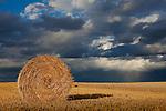 Europa, DEU, Deutschland, Hessen, Wetterau, Eberstadt (Lich), Sommer, Agrarlandschaft, Getreidefeld n. d. Ernte, Strohballen, Rundballen, Himmel, Wolken, Cumuluswolken, Wolkenstimmung, Regenwolken, Kategorien und Themen, Natur, Umwelt, Landschaft, Jahreszeiten, Stimmungen, Landschaftsfotografie, Landschaften, Landschaftsphoto, Landschaftsphotographie, Wetter, Himmel, Wolken, Wolkenkunde, Wetterbeobachtung, Wetterelemente, Wetterlage, Wetterkunde, Witterung, Witterungsbedingungen, Wettererscheinungen, Meteorologie, Bauernregeln, Wettervorhersage, Wolkenfotografie, Wetterphaenomene, Wolkenklassifikation, Wolkenbilder, Wolkenfoto<br /> <br /> [Fuer die Nutzung gelten die jeweils gueltigen Allgemeinen Liefer-und Geschaeftsbedingungen. Nutzung nur gegen Verwendungsmeldung und Nachweis. Download der AGB unter http://www.image-box.com oder werden auf Anfrage zugesendet. Freigabe ist vorher erforderlich. Jede Nutzung des Fotos ist honorarpflichtig gemaess derzeit gueltiger MFM Liste - Kontakt, Uwe Schmid-Fotografie, Duisburg, Tel. (+49).2065.677997, ..archiv@image-box.com, www.image-box.com]