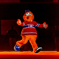 25 March 2019: Former Montreal Expos Mascot Youppi (now a mascot for the Montreal Canadiens hockey club) is introduced during pre-game ceremonies commemorating the 50-year anniversary of the Expos prior to an exhibition game between the Toronto Blue Jays and the Milwaukee Brewers at Olympic Stadium in Montreal, Quebec, Canada. The Brewers defeated the Blue Jays 10-5 in the first of two MLB pre-season games in the former home of the Montreal Expos. Mandatory Credit: Ed Wolfstein Photo *** RAW (NEF) Image File Available ***