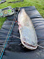 BNPS.co.uk (01202558833)<br /> Pic: BNPS<br /> <br /> The record breaking Catfish and the fisherman....<br /> <br /> Angler Oliver Cullingford was stunned when he caught this record-breaking catfish - using a fly fishing rod. <br /> <br /> Oliver was fly fishing, a sport that usually targets smaller species like trout and salmon, when the monster fish was lured by his fly bait.