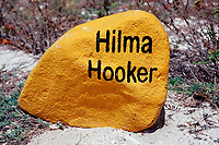 Yellow stone for dive spot Hilma Hooker, Netherland Antilles, Bonaire, Caribbean Sea, Atlantic