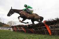Ballycassel ridden by Sam Twiston-Davies in jumping action during the Betfair Funds PJA Doctor National Hunt Maiden Hurdle - Horse Racing at Fakenham Racecourse, Norfolk - 10/12/12 - MANDATORY CREDIT: Gavin Ellis/TGSPHOTO - Self billing applies where appropriate - 0845 094 6026 - contact@tgsphoto.co.uk - NO UNPAID USE.