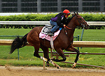 LOUISVILLE, KY - APRIL 23: Go Maggie Go (Ghostzapper x Magibel, by Tale of the Cat) works 5 furlongs in 1:00.8 with exercise rider Tammy Fox at Churchill Downs in preparation for the Kentucky Oaks. Owner Mike Tarp, trainer Dale L. Romans. (Photo by Mary M. Meek/Eclipse Sportswire/Getty Images)