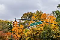 NOVA YORK, EUA, 02.11.2018 - TURISMO-EUA - Vista do Central Parque no outono de 2018 na cidade de Nova York nos Estados Unidos nesta sexta-feira, 02. (Foto: William Volcov/Brazil Photo Press)