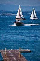 Europe/France/Rhône-Alpes/74/Haute Savoie/ Sciez-sur-Léman: Voilier  et canot à moteur le Lac Léman