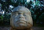 Olmec; Mexico; Ancient Cultures; Americas; Archaeology; artifact; La Venta; Olmec Head