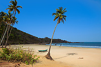 Deserted Patnem sand beach, with palm trees, a colorful traditional boat, and the Arabian sea, near Palolem beach Goa India