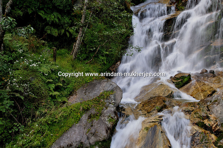 A rapid on the way to Trongsha. Arindam Mukherjee..