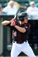 Rochester Red Wings outfielder Chris Rahl (4) at bat during the first game of a doubleheader against the Buffalo Bisons on July 6, 2014 at Frontier Field in Rochester, New  York.  Rochester defeated Buffalo 6-1.  (Mike Janes/Four Seam Images)