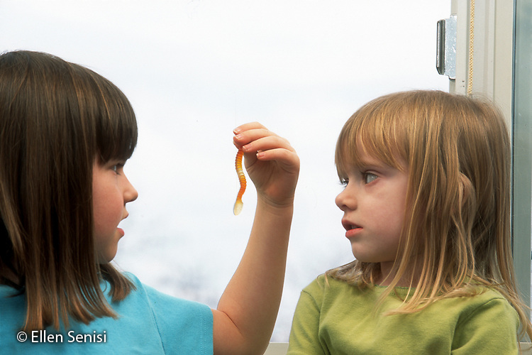 MR / Schenectady, NY. Yates Arts in Education Magnet Elementary School. Student (girl left: 6, grade 1) holds gummy worm in front of her friend's face (girl right: 4, pre-k) as they examine it. MR: Bar8, Mor8. ID: AJ-LC. © Ellen B. Senisi