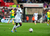 Swansea v Norwich, Liberty Stadium, Saturday 29th march 2014...<br /> <br /> <br /> <br /> Swansea's Nathan Dyer on the ball.