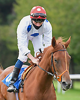 Irenes Dream ridden by Kieran Shoemark goes down to the start of The British EBF Novice Stakes during Horse Racing at Salisbury Racecourse on 11th September 2020