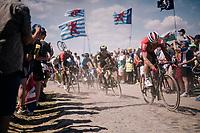 André Greipel (DEU/Lotto-Soudal) on pavé sector #4<br /> <br /> Stage 9: Arras Citadelle > Roubaix (154km)<br /> <br /> 105th Tour de France 2018<br /> ©kramon