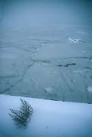 Iced over river<br />