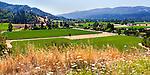 North end of Napa Valley, farmland, row crops.