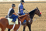 Baltimore, MD- May 17: 138th Kentucky Derby Winner I'll Have Another works out in preps for the 137th Preakness at Pimlico Race Course in Baltimore, MD on 05/17/12. (Ryan Lasek/ Eclipse Sportswire)