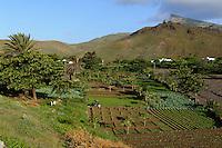 An der Straße Mindelo-Calhau, Sao Vicente, Kapverden, Afrika