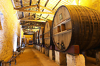Chateau St Martin de la Garrigue. Languedoc. Barrel cellar. Wooden fermentation and storage tanks. Wooden cross-beam roof. France. Europe.