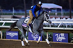 DEL MAR, CA - NOVEMBER 01: Stainless, owned by StarLadies Racing and trained by Todd A. Pletcher, exercises in preparation for the 14 Hands Winery Breeders' Cup Juvenile Fillies at Del Mar Thoroughbred Club during morning workouts on November 1, 2017 in Del Mar, California. (Photo by Michael McInally/Eclipse Sportswire/Breeders Cup)