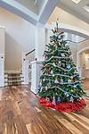 WA, Bellevue, Christmas tree