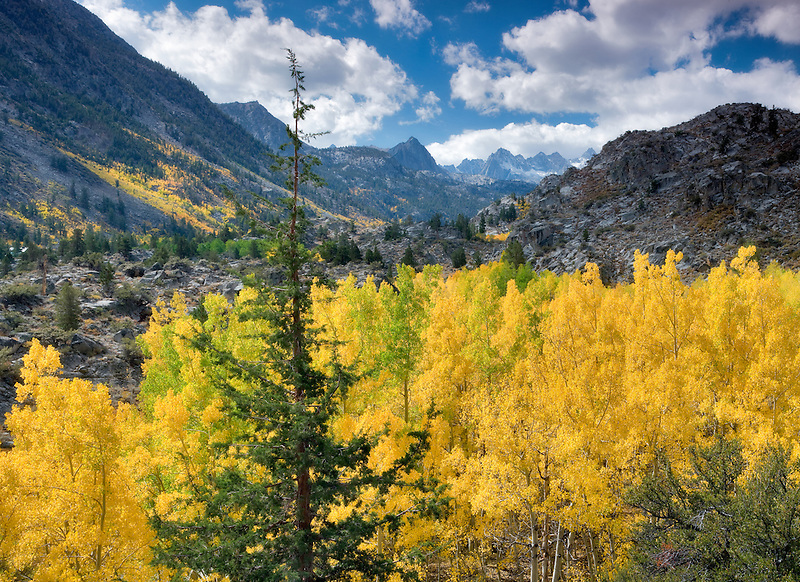 Clouds over mountains and fall color.  Inyo National Forest. Eastern Sierra. California