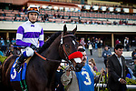 Bond Holder ridden by Mario Guiterez at the Cash Call Futurity on December 14, 2013 at Betfair Hollywood Park in Inglewood, California .(Alex Evers/ Eclipse Sportswire)