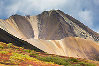 Autumn colors over the tundra in Sable Pass, Denali National Park, Interior, Alaska.