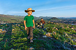 Hiking the hill with the boys at sunset. An ever growing town below.