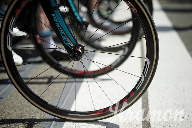 ready to start!<br /> <br /> Belgian National Road Cycling Championships 2016<br /> Les Lacs de l'Eau d'Heure