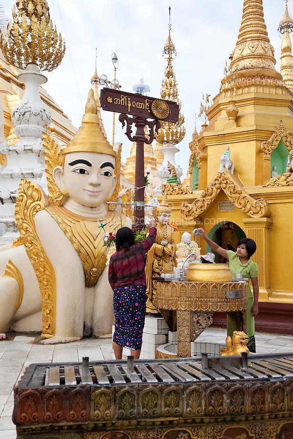 Myanmar, Burma.  Shwedagon Pagoda, Yangon, Rangoon.  Worshipers pour water, a sign of purification, over small Buddhas.