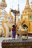 Myanmar, Burma.  Shwedagon Pagoda, Yangon, Rangoon.  Worshipers pour water, a sign of purification, over small Buddhas.