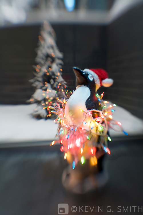 Plastic penguin with christmas lights wraped around it standing on concrete floor in front of  window, christmas tree outside in courtyard in background, selective focus.