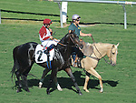 October 9, 2010.Victore's Cry riden by Corey Nakatani approaching the gate for The Oak Tree Mile at Hollywood Park, Inglewood, CA._Cynthia Lum/Eclipse Sportswire.com