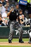 MLB Umpires 2009