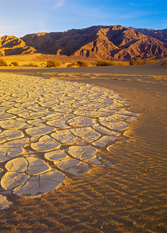 Mud patterns. Death Valley National Park, California