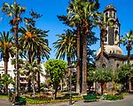 Spanien, Kanarische Inseln, Teneriffa, Puerto de la Cruz: Plaza de la Iglesia | Spain, Canary Islands, Tenerife, Puerto de la Cruz: Plaza de la Iglesia