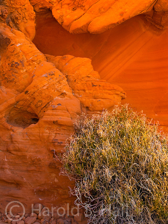 Valley of Fire State Park near Las Vegas, Nevada is full of many unusual rock formations.