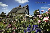 Tom Mackie, FLOWERS, photos, Thatched Cottage & Garden, Suffolk, England, GBTM110122-1,#F# Garten, jardín