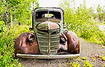 Atlin classic truck
