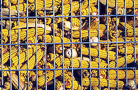 Dried corn cobs in storage.