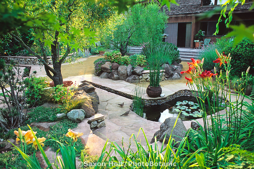 Water garden with Koi and lilies