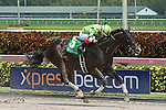 HALLANDALE BEACH, FL -APRIL 02:   #5 Valid (VA) with jockey Nik Juarez on board wins the 34th running of the Skip Away GIII Stakes on April 2nd, 2016 at Gulfstream Park in Hallandale Beach, Florida. (Photo by Liz Lamont/Eclipse Sportswire/Getty Images)