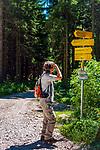 Deutschland, Bayern, Chiemgau, Marquartstein: Wanderwege unterhalb der Hochplatte. Von Marquartstein für die Hochplattenbahn in wenigen Minuten hoch zur Staffenalm | | Germany, Bavaria, Chiemgau, Marquartstein: hiking trails below Hochplatte mountain, a chairlift takes you within minutes from Marquartstein to Staffenalm